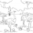 Coloriage Zoo 6