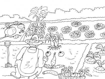 Coloriage jardinier 19 coloriage jardiniers coloriage - Dessin de potager ...