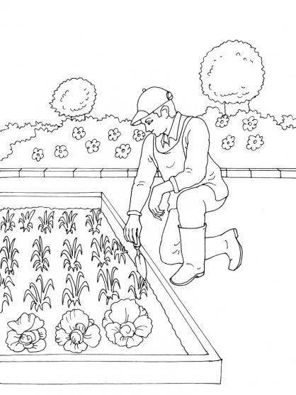 Coloriage jardinier 3 coloriage jardiniers coloriage - Dessin de potager ...