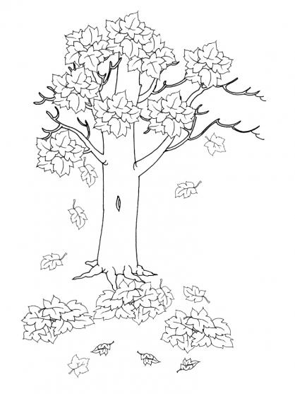 Coloriage automne 12 coloriage automne coloriage nature - Arbre automne dessin ...