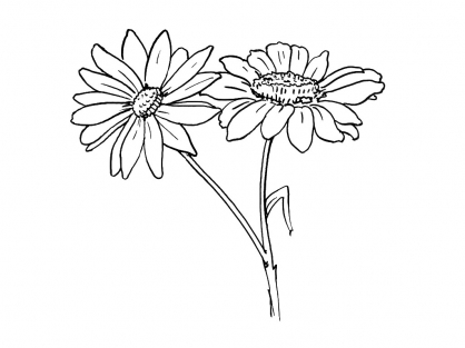 Coloriage Fleur 1