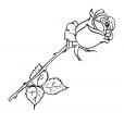 Coloriage Fleur 2