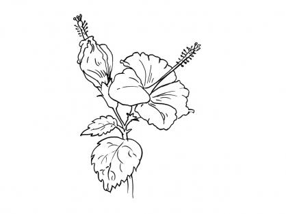 Coloriage Fleur 4