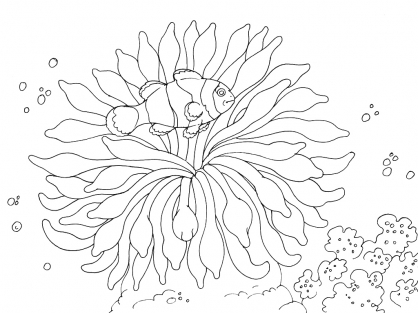 Coloriage Mer 5