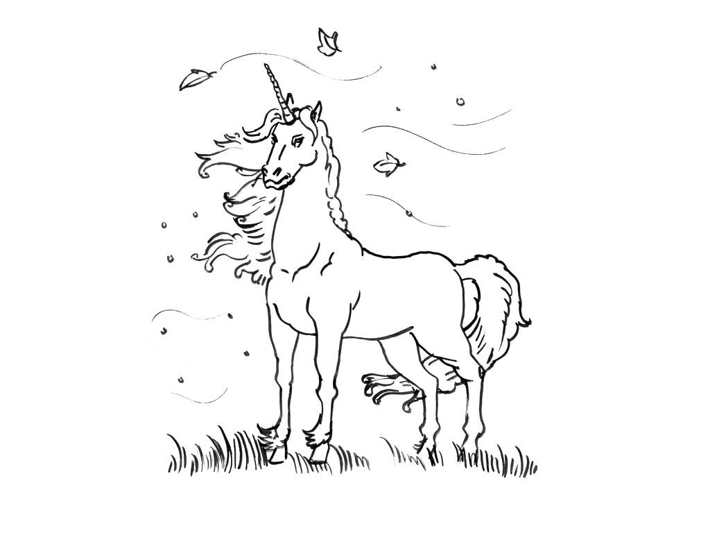 Comment dessiner des licornes for Comment dessiner des conceptions architecturales