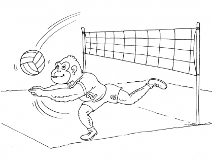 Coloriage Volley 29