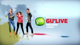 Kung Fu Panda dans le Gu'live !