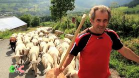 Copains Comme Cochons émission 9