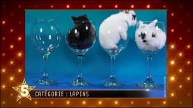 "Gulli Buzz Awards - catégorie ""Lapins"""