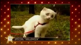 "Gulli Buzz Awards - catégorie ""Halloween"""