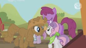 My little pony avoir une soeur