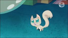 Rekkit - La revanche du chaton