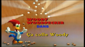 Ça colle Woody