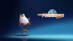 Les Pingouins de Madagascar - Commandant
