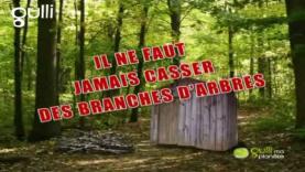 Crée ta cabane en bois dans la Forêt