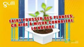 Fais pousser des plantes