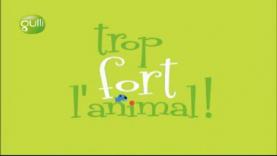 Gag 2 - Trop fort l'animal