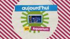 Aquarium Marsupilami