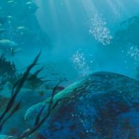 Bionicle : La région de l'eau sur l'île d'Okoto