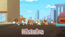 Histoire - Les Puppies : L'Agence Canine