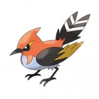 Pokémon saison 18 sur Gulli : Braisillon