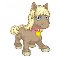 Ginevra le petit poney