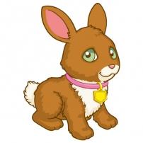 Karota le petit lapin
