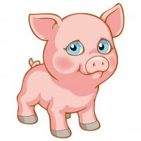Lindo le petit cochon