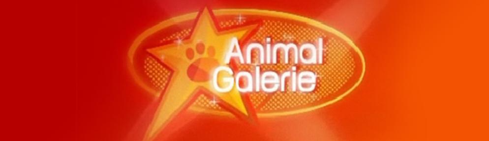 Animal Galerie