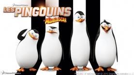 Les Pingouins de Madagascar dans Gu'Live