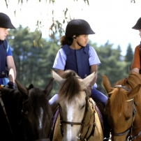 Lisa, Carole et Steph à cheval