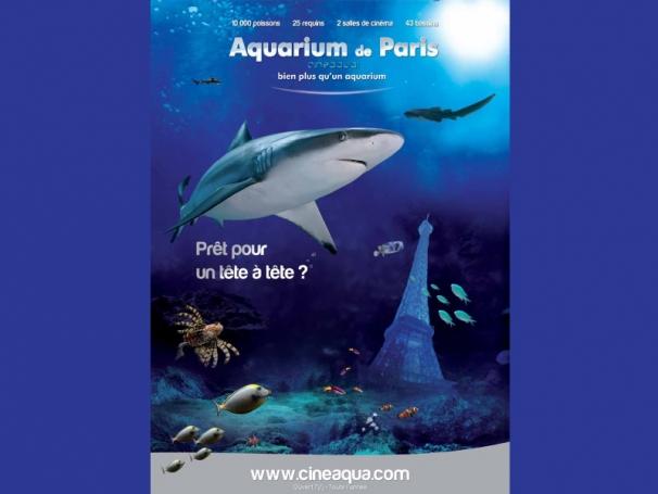 bienvenue 224 l aquarium de actu quoi d neuf gulli