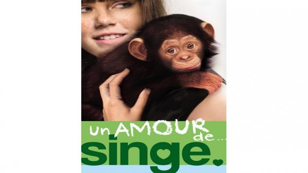 Un amour de singe