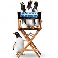 La chaise de réalisateur des pingouins