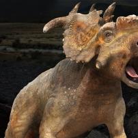 Sur la Terre des Dinosaures - Bulldust