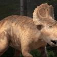 Sur la Terre des Dinosaures - Juniper