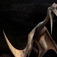 Sur la Terre des Dinosaures - Ptérosaures