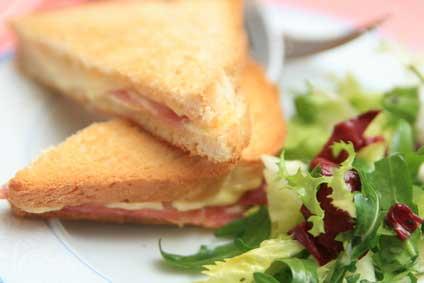 Croque monsieur aux courgettes les produits de saison l 39 automne agir ma plan te gulli - Sachet cuisson croque monsieur grille pain ...