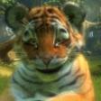 Le tigre joyeux