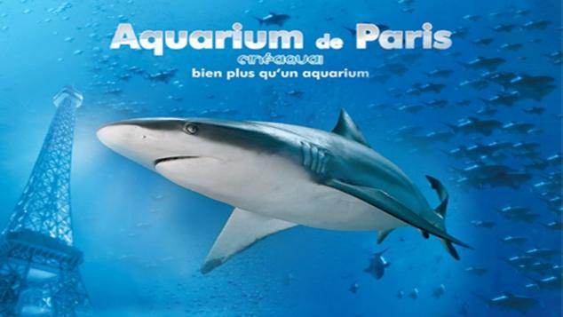 """Concours """"A la recherche du Plancton"""""""