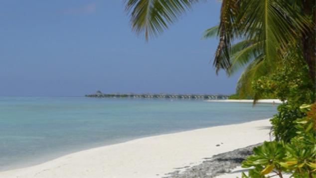 Une île-poubelle au paradis