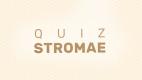 Quiz Stromae