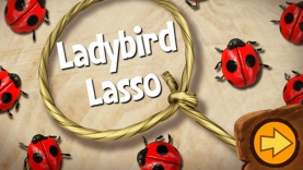 Jeu Tree Fu Tom - Ladybird Lasso