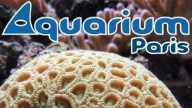 L'Aquarium de Paris