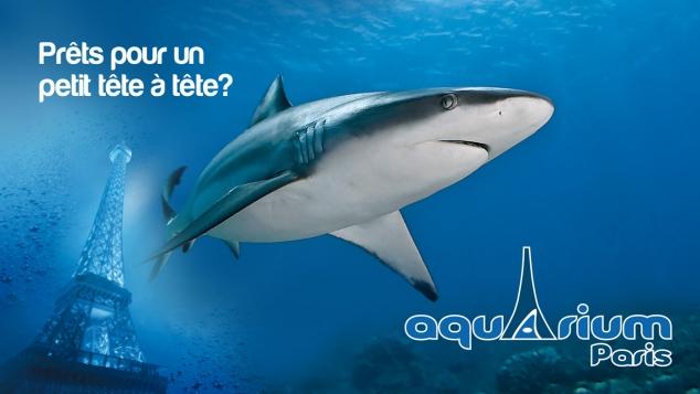 Aquarium de Paris - Exposition : Comprendre et rêver en famille, avec Gulli
