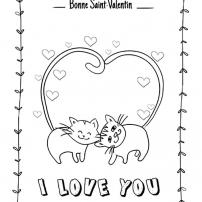 un chat pour la saint valentin
