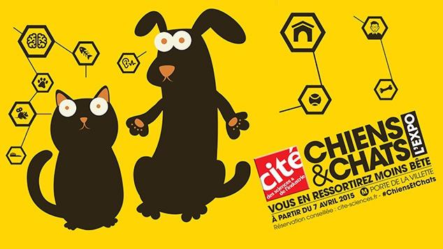 Chiens & Chats, l'expo qui rend moins bête