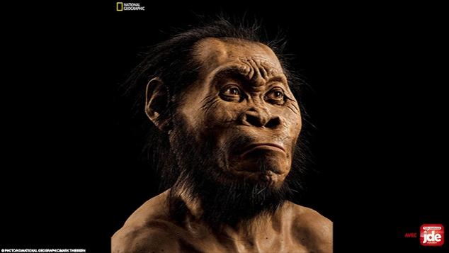 Homo naledi, notre étrange ancêtre