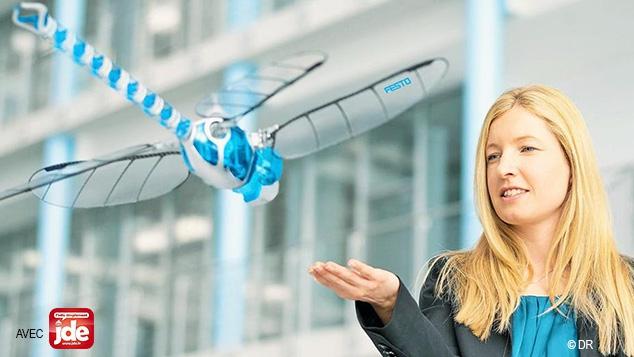 Quand les insectes inspirent les robots