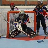 Roller in line hockey